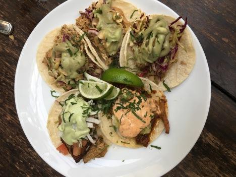 Palm House    Tacos